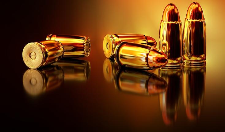 Descubra as novas leis para a posse de armas!