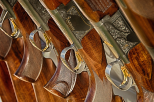 Como funciona o mercado de armas de fogo no Brasil?